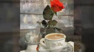 صباح الخير  والقهوة مع فيروز