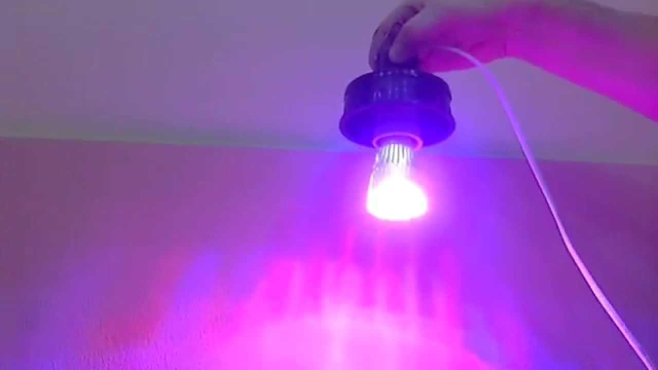 Светодиоды против люминесцентной лампы Fluora Т8 для растений .