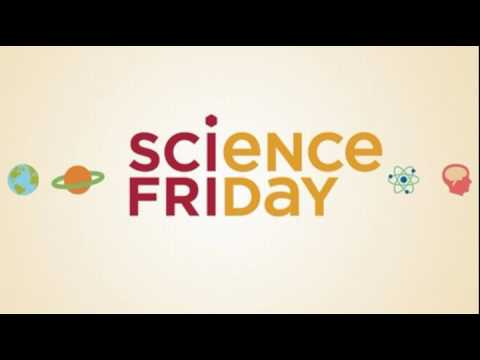 Science Friday Introducing Undiscovered: Episode 1, Boss Hua and the Black Box