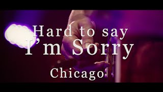 Смотреть клип Passenger, The Once & Stu Larsen - Hard To Say I'M Sorry