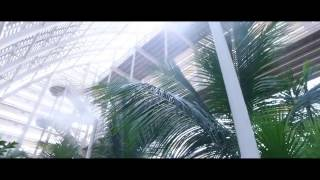 Um Al Emarat Park, Abu Dhabi - Mist Cooling by EMergyKool