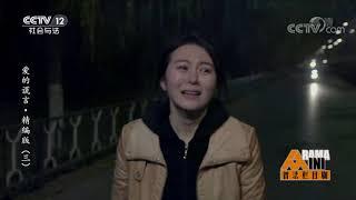《普法栏目剧》 20190806 爱的谎言·精编版(三)| CCTV社会与法