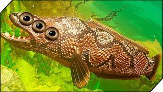 ЗМЕЕГОЛОВ. РЫБА УБИЙЦА ➤ FEED AND GROW FISH