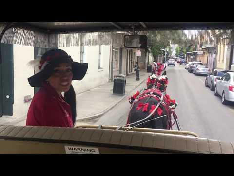 Royal Carriages Mule-Drawn History Tours Of New Orleans' French Quarter