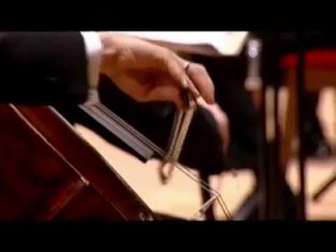 Gautier Capuçon & Valery Gergiev / Tchaikovsky Rococo Variations - Prokofiev Sinfonia Concertante