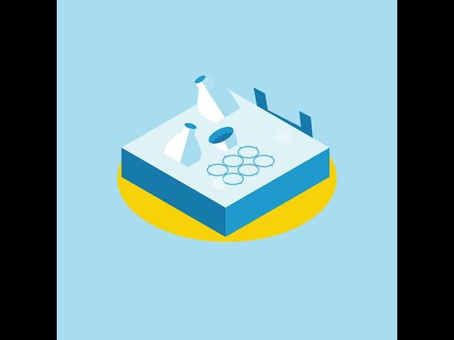 Microplastiche: dalle fonti principali, come finiscono nei laghi?