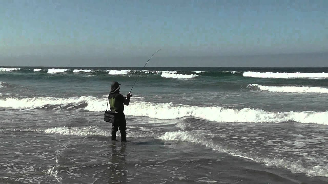 Morro bay surfperch fishing episode ii youtube for Morro bay fishing