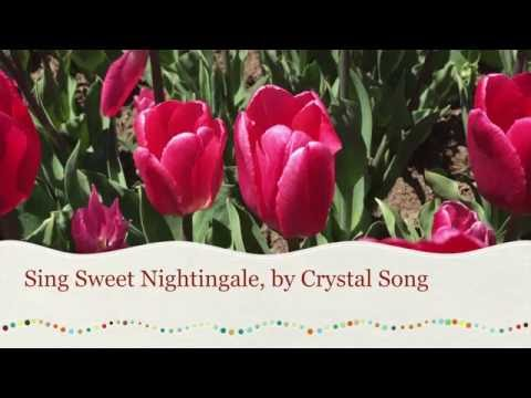 """Crystal Song: """"Sing, Sweet Nightingale"""" cover from Disney movie Cinderella"""