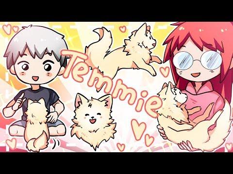 【vlog】TEMMIE! (*゚▽゚*)