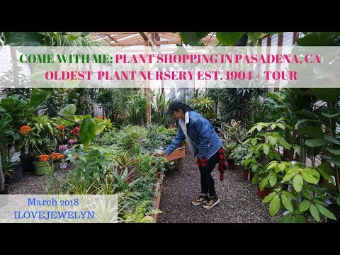 Come with me: Plant shopping at Pasadena Nursery est. 1904 + tour | March 2018 | ILOVEJEWELYN