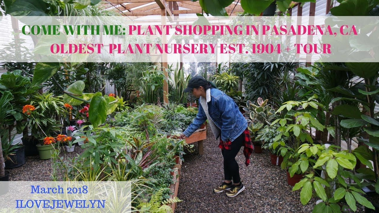 Come With Me Plant Ping At Pasadena Nursery Est 1904 Tour March 2018 Ilovejewelyn