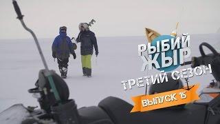 Зимняя рыбалка 2017 на Рыбинском водохранилище. Рыбий жЫр сезон 3 выпуск 15