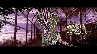 §§§Noise System - #21 Boom Bap Beat Hip Hop Instrumental§§§ [CUSTOM VIDEO #2]