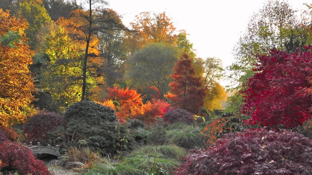 Sonates d 39 automne au parc botanique de haute bretagne youtube - Parc botanique de haute bretagne ...