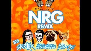 Duck Sauce - NRG (Skrillex, Kill The Noise, Milo & Otis Remix) - LYRICS