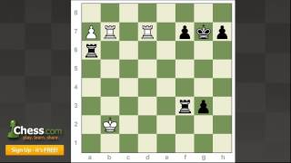 Grandmaster Chess Tournaments: World Cup Reviews | Part 1!