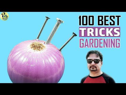 100 Best GARDENING HACKS by Garden Tips - Beginners to Experts