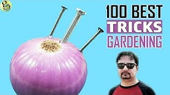 100 Best GARDENING HACKS by Garden Tips - Beginners to Experts