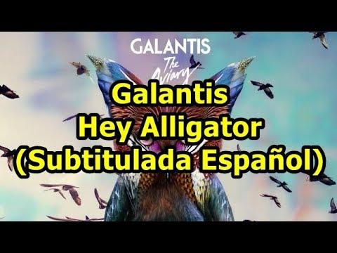 Galantis - Hey Alligator (Subtitulada Español)