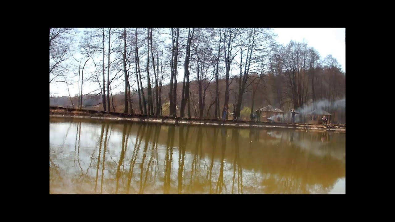 три сома и три кента на рыбалке на платнике Лагуна