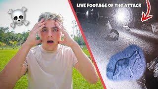 This Animal ATTACKED My FARM!! (Live Footage)