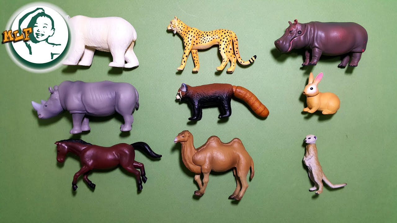 Learn names of zoo animals and animal sounds for kids with TOMY ...