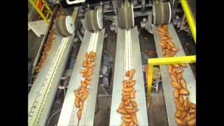 Nash Produce Sweet Potatoes