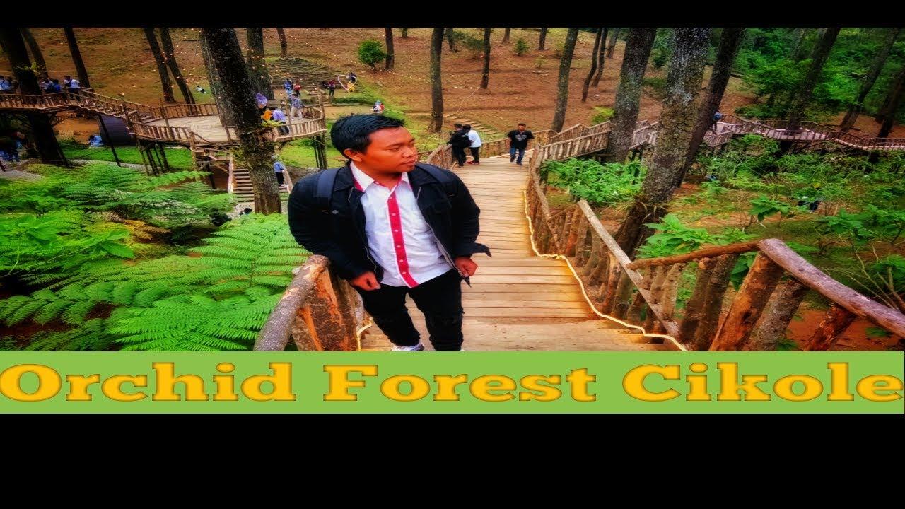 Orchid Forest Cikole Wisata Lembang Bandung Terbaru 2018