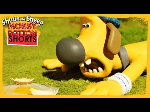 Bitzer Over Easy - Shaun the Sheep [Full Episode]