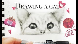 Cat Drawing ???? How to Draw a Cat -  畫貓 素描貓咪 寫實貓 手繪 Drawing Kitten - Cat Sketch for beginners