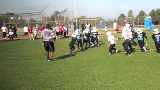 Little league RYS Panthers 2014