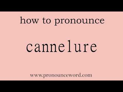 cannelure. How to pronounce the english word cannelure .Start with C. Learn from me.