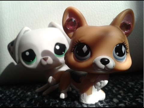 Littlest Pet Shop: Siana (Film)