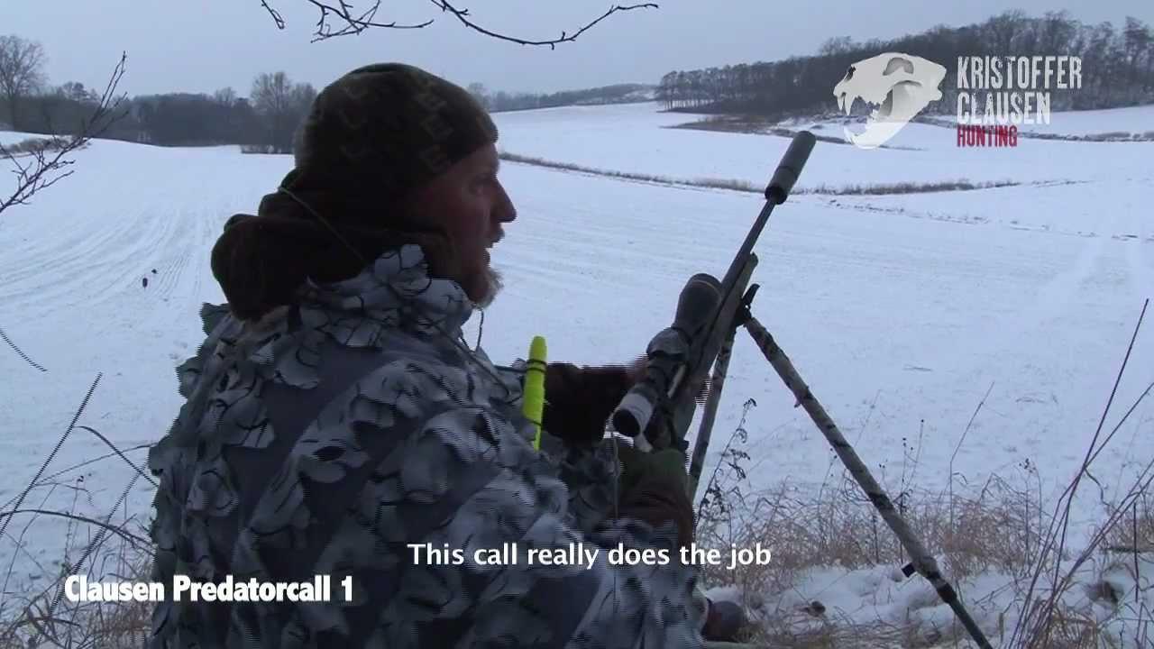 FOX CALL PREDATOR CALL FOX SHOOTING