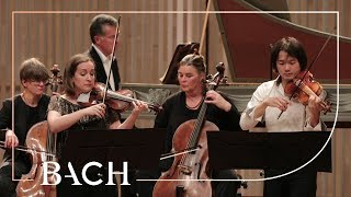 Bach - Concerto for two violins in D minor BWV 1043 - Sato and Deans | Netherlands Bach Society