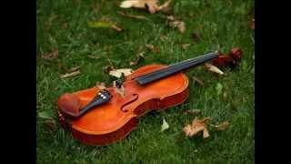 David Guetta - Titanium   Violin Cover By Meg Loyd