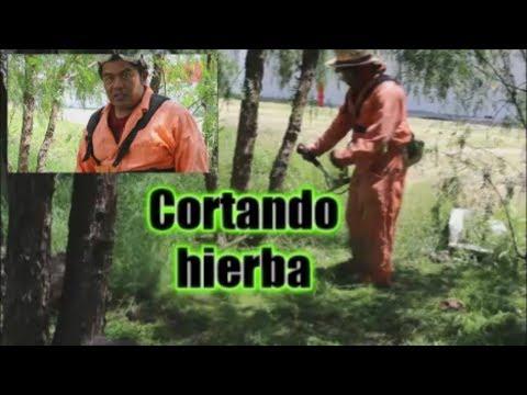 Cortando Hierba Con Desbrozadora thumbnail