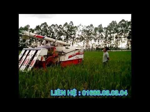 Chạy thử Máy gặt đập liên hoàn tại Bắc Ninh - Máy nông nghiệp nhật cũ Kubota Iseki Yanmar giá tốt