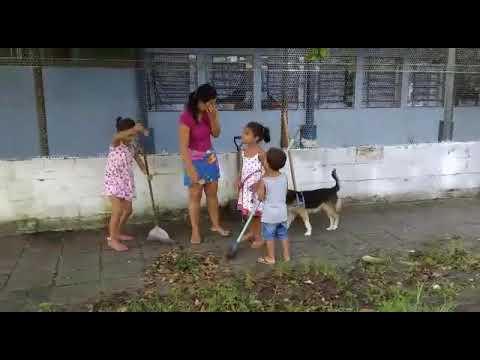 Parabéns aos moradores de São Vicente que estão executando o trabalho que deveria ser da Prefeitura