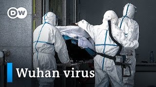 Deadly virus from China has global health officials on alert | DW News