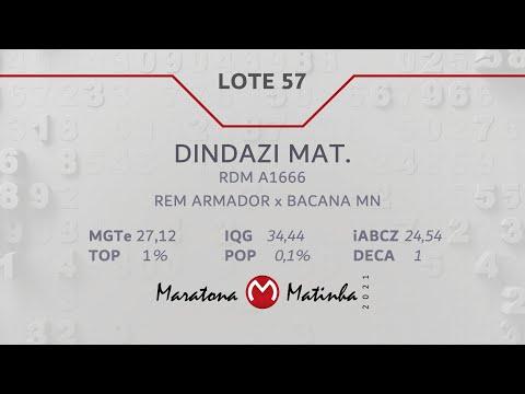 LOTE 57 Maratona Matinha