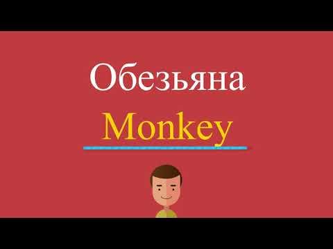 Как будет обезьяна по английски