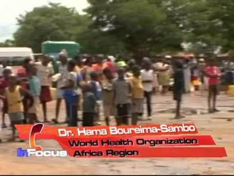 Malaria and Cholera in Niger