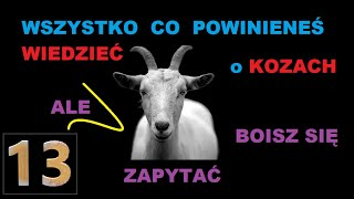 Koza 13 mocnych ciekawostek o kozach 🐐 HD