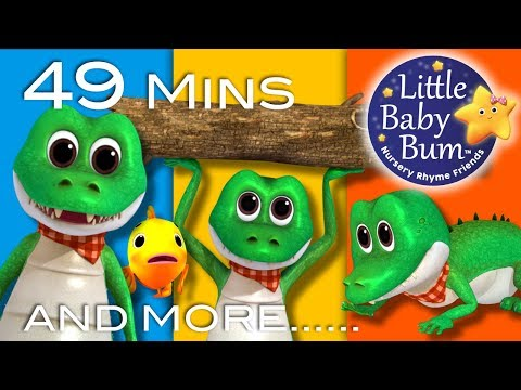 Crocodile Song | Plus More Animal Songs | 49 Minutes Compilation from LittleBabyBum!