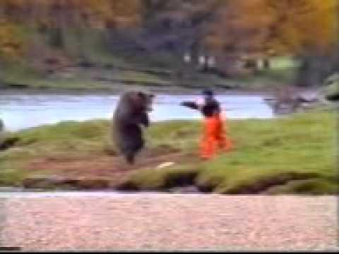 Bear+Fight+TeluguWap biz