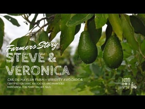 Organic Avocado grower works with nature. Steve shares his story with Fresh Box Organics