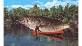 largest fish ever caught rod and reel