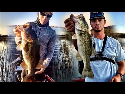Colorado River Bass Fishing | Martinez Lake