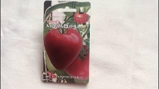 Изумительный сорт томата -  Мазарини